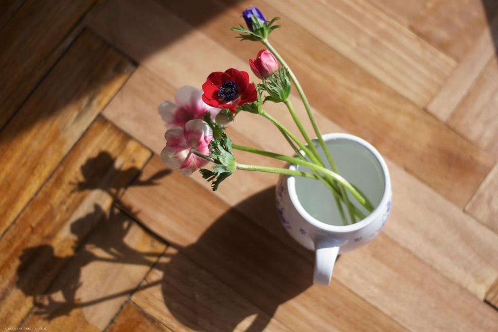 heelsandpeplum photography my corner on sunday flowers light and shadow